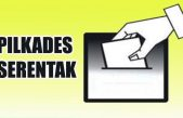 Hasil Pemilihan Kepala Desa Kabupaten Banyuasin Tahun 2017