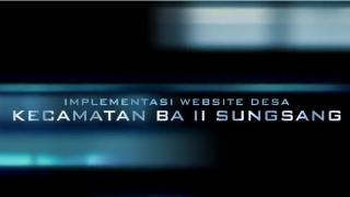 Pelatihan Website Desa Kecamatan Sungsang