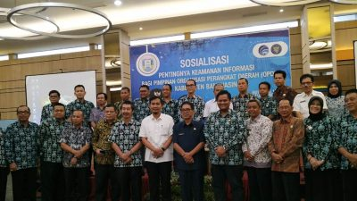 Sosialisasi Pentingnya Kesadaran Keamanan Informasi bagi Pimpinan Organisasi Perangkat Daerah(OPD) di Kabupaten Banyuasin