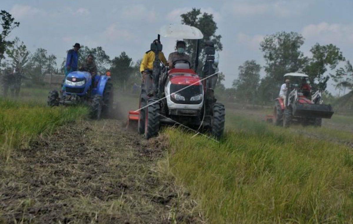 Lowongan Kerja, Dinas Pertanian Ketahanan Pangan dan Perikanan Kabupaten Banyuasin Bakal Rekrut Penyuluh Pertanian 2021