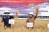 Gubernur HD : Banyuasin Penghasil Gabah Terbesar di Provinsi Sumsel