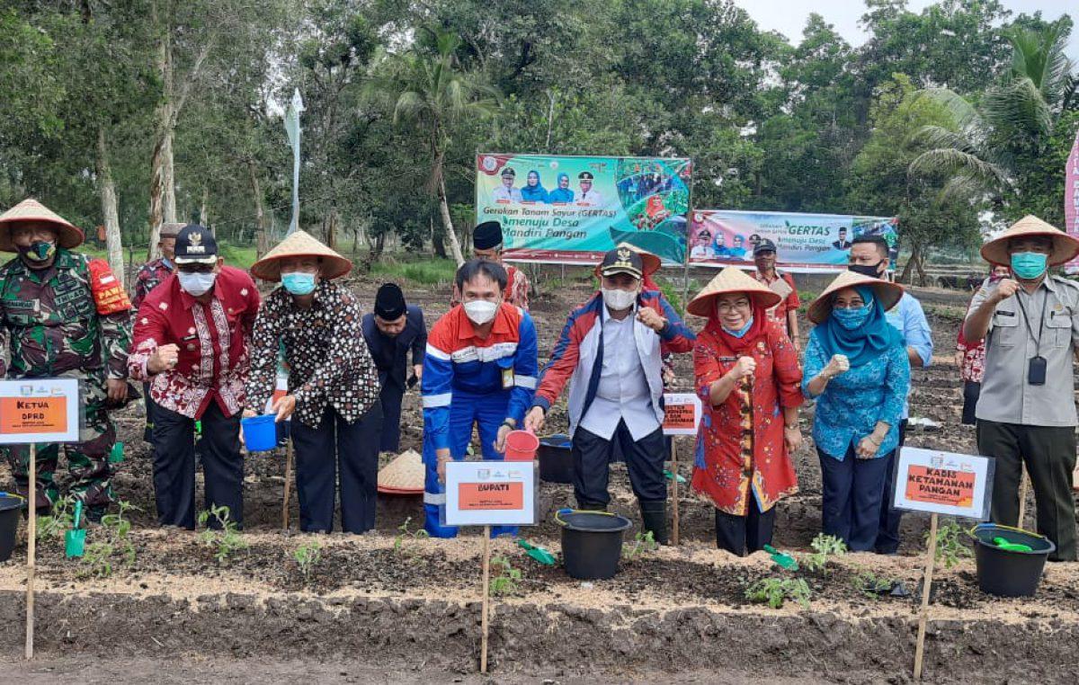 Bupati Banyuasin : Launching Tanam Sayur Momen Baik Peningkatan Ekonomi Mandiri Di Masa Pandemi